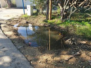 בור שהתמלא במים בשכונת נווה חיים   צילום: מירית גולן